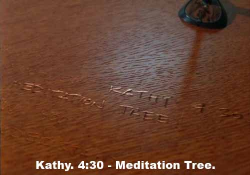 Michelle's note: Kathy. 4:30 - Meditation Tree